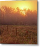 Oranage Dawn Metal Print