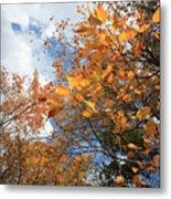 Orange And Blue Metal Print