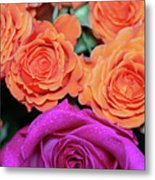 Orange And White With Pink Tip Roses Metal Print