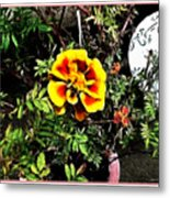Orange And Yellow Flower Metal Print