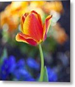 Orange And Yellow Tulip II Metal Print