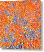 Orange Autumn Impression Metal Print