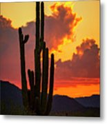 Orange Beautiful Sunset  Metal Print