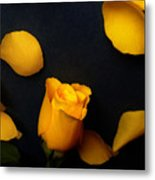 Orange Beauty 2 Metal Print