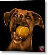 Orange Boxer Mix Dog Art - 8173 - Bb Metal Print