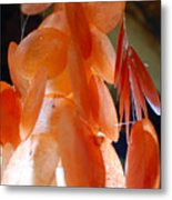 Orange Chimes Metal Print