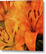 Orange Cluster 9225 Idp_2 Metal Print