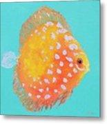 Orange Discus Fish With Purple Spots Metal Print