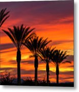 Orange Dream Palm Sunset  Metal Print