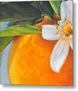 Orange En Fleurs Metal Print