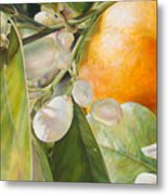 Orange Fleurie Metal Print