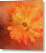 Orange Flower Energy Metal Print