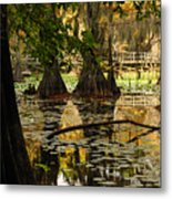 Orange Glow In The Forest Metal Print