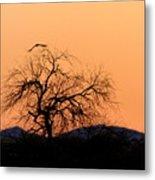 Orange Glow Sunset In The Desert Metal Print