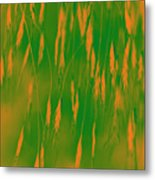 Orange Grass Spikes Metal Print