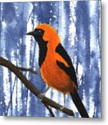 Orange-headed Oriole Metal Print