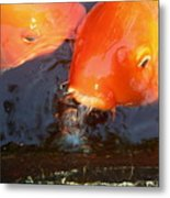 Orange Kiss Metal Print