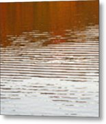 Reflections Of Fall Leaves And Sunlit Ripples On Jamaica Pond Metal Print