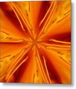 Orange Marmalade Metal Print