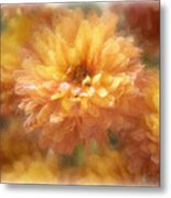 Orange Passion Metal Print