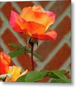 Orange Rose And Bricks Metal Print