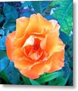 Orange Rose On Green  Metal Print