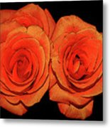 Orange Roses With Hot Wax Effects Metal Print