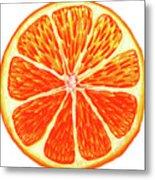 Orange Slice Metal Print