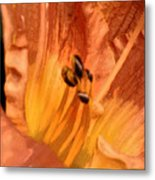 Orange Streaming Metal Print