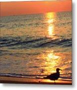 Orange Sunrise Metal Print