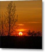 Orange Sunset Through The Trees Metal Print
