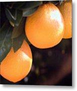 Orange Trio Metal Print