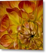 Orange-yellow Metal Print
