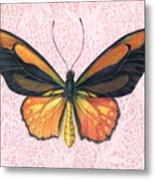 Oranged Birdwing Metal Print