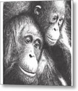 Orangutans Metal Print