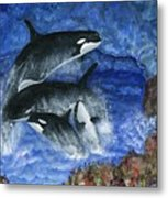 Orcas Family Frolicks Metal Print