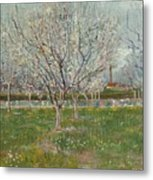 Orchard In Blossom Plum Trees Metal Print