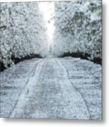 Orchard In White Metal Print