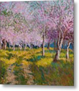 Orchard Light Metal Print