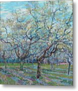 Orchard With Blossoming Plum Trees   Metal Print