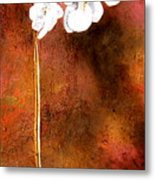 Orchid 4 Metal Print