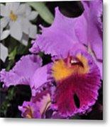 orchid 942 Purple Brassolaeliocattleya  Metal Print