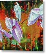 Orchid A Metal Print