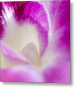 Orchid Abstract Metal Print