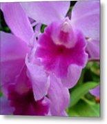 Orchid Deep Metal Print