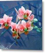 Orchid Flowers 8 Metal Print