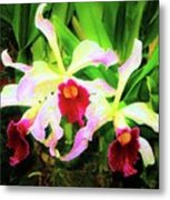 Orchid Flowers Color 1 Metal Print