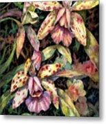 Orchid Garden Metal Print by Ann  Nicholson