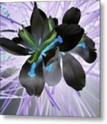 Orchid Inverted Metal Print