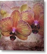 Orchid Layers Metal Print